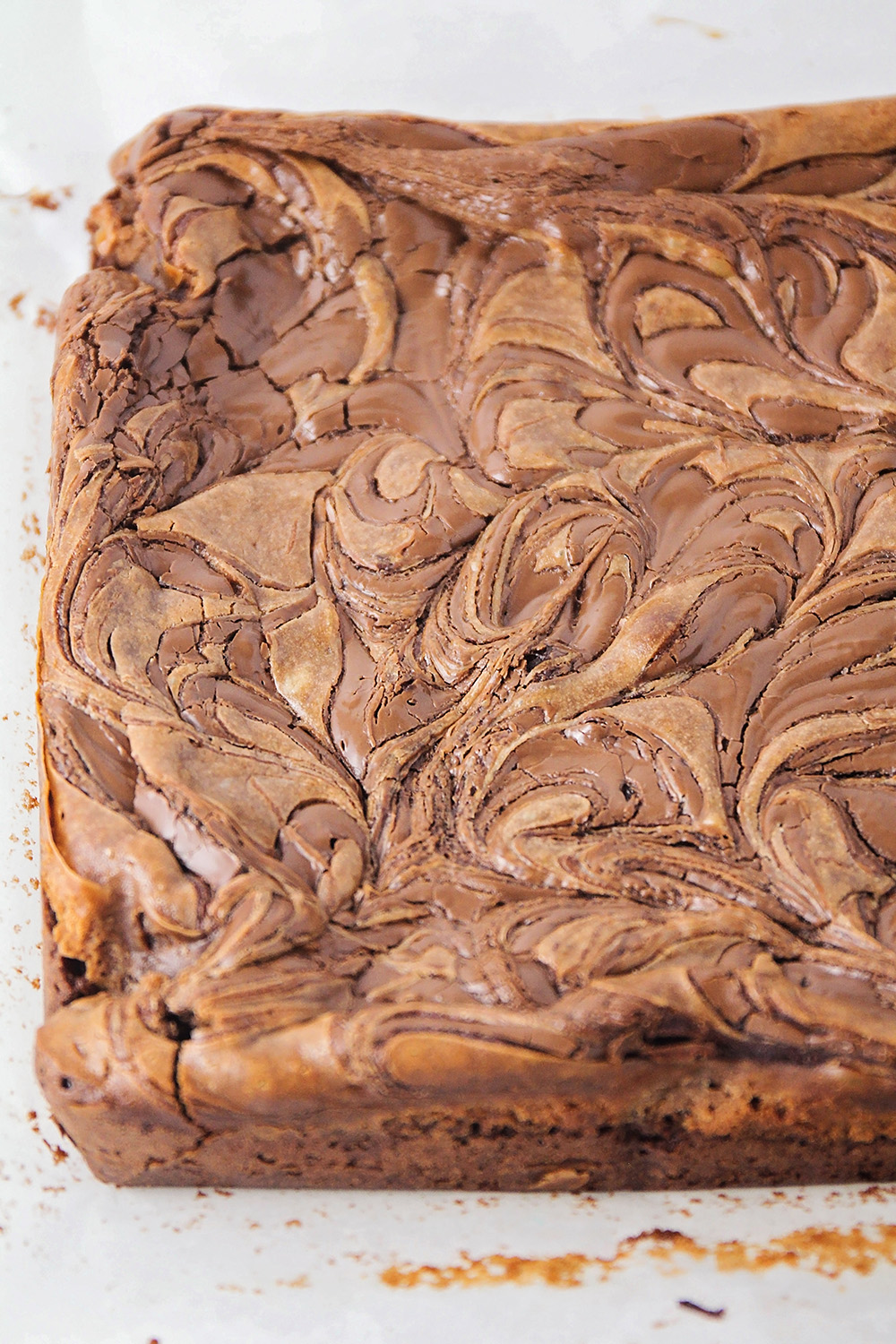 These decadent and delicious Nutella cheesecake brownies have the perfect combination of flavors, and are so rich and chocolatey!