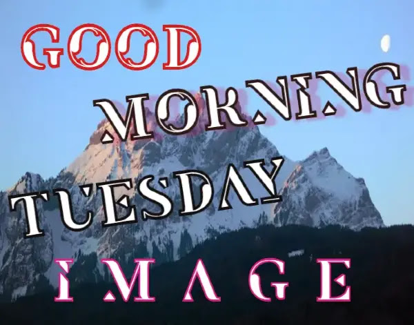 Good Morning Tuesday Images HD Free Download