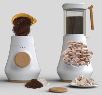 Καφετιέρα «φάρμα μανιταριών»;
