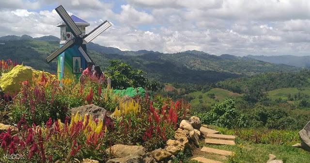 Celosia Flower Farm and Jumalon Butterfly Sanctuary