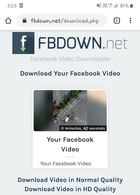 Facebook Video Downloader tool