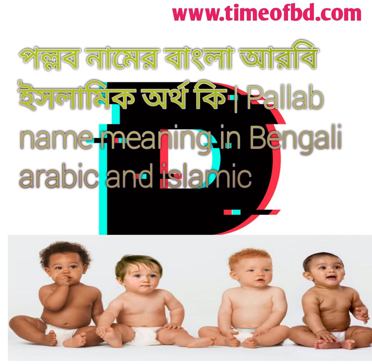 পল্লব নামের অর্থ কি, পল্লব নামের বাংলা অর্থ কি, পল্লব নামের ইসলামিক অর্থ কি, Pallab name meaning in Bengali, পল্লব কি ইসলামিক নাম,