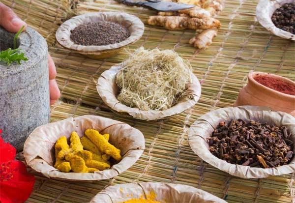கொரோனாவுக்கு சிகிச்சையளிக்க ஆயுர்வேத மருந்துகளும் பயன்படுத்தப்படுகின்றன: விஜயபாஸ்கர்