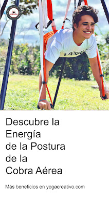 yoga aereo, air yoga, aerial yoga, aeroyoga, yoga aerea, fly, flying, suspension, gravity, gravedad, acro, acrobatico, cursos, formacion, certificacion, acreditacion, seminarios, yoga alliance
