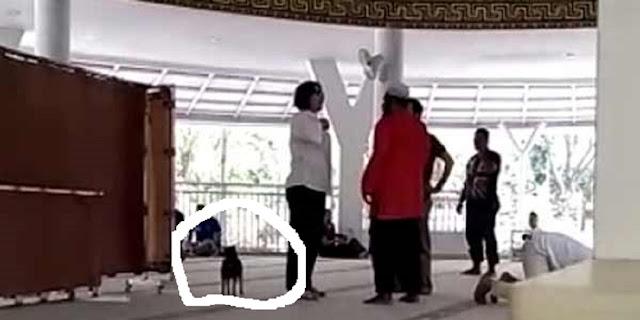 Ujung  Nasib Wanita Pembawa Anjing di Masjid Al Munawaroh : Bebas Karena Gila