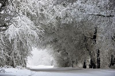 Уже в ближайшие сутки температура воздуха понизится от -23 до 28 градусов, местами до -40 градусов