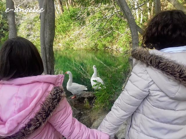 Κυριακάτικη βόλτα στη λίμνη Ζαρού