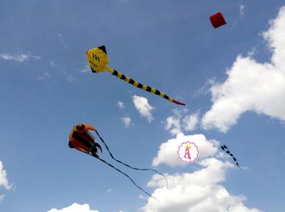 Какие воздушные змеи (кайты) летали над селом Трихаты, Украина