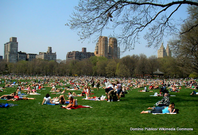 Sheep Meadow, Central Park, Nova York