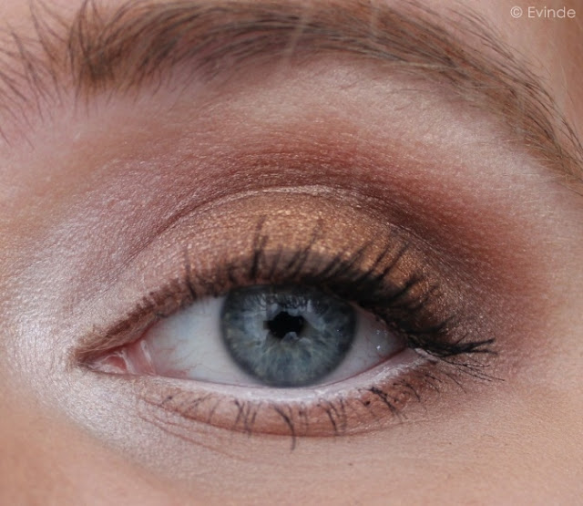 warm eye look created with Coastal Scents hot pots
