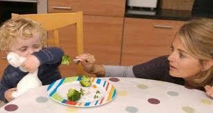 Cara Mengatasi Anak Susah Makan Yang Efektif