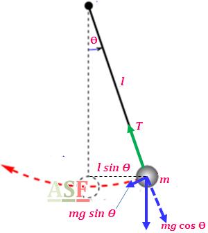 Ayunan sederhana pendulum ayo sekolah fisika gambar 2 pendulum sederhana dan diagram benda bebas ccuart Gallery