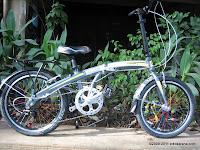 E 20 Inch Giant Alumunium Alloy Frame Folding Bike