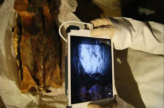 Scientists used infrared scans to peer at Ancient Egyptian mummies
