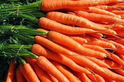 Zanahorias Recetas