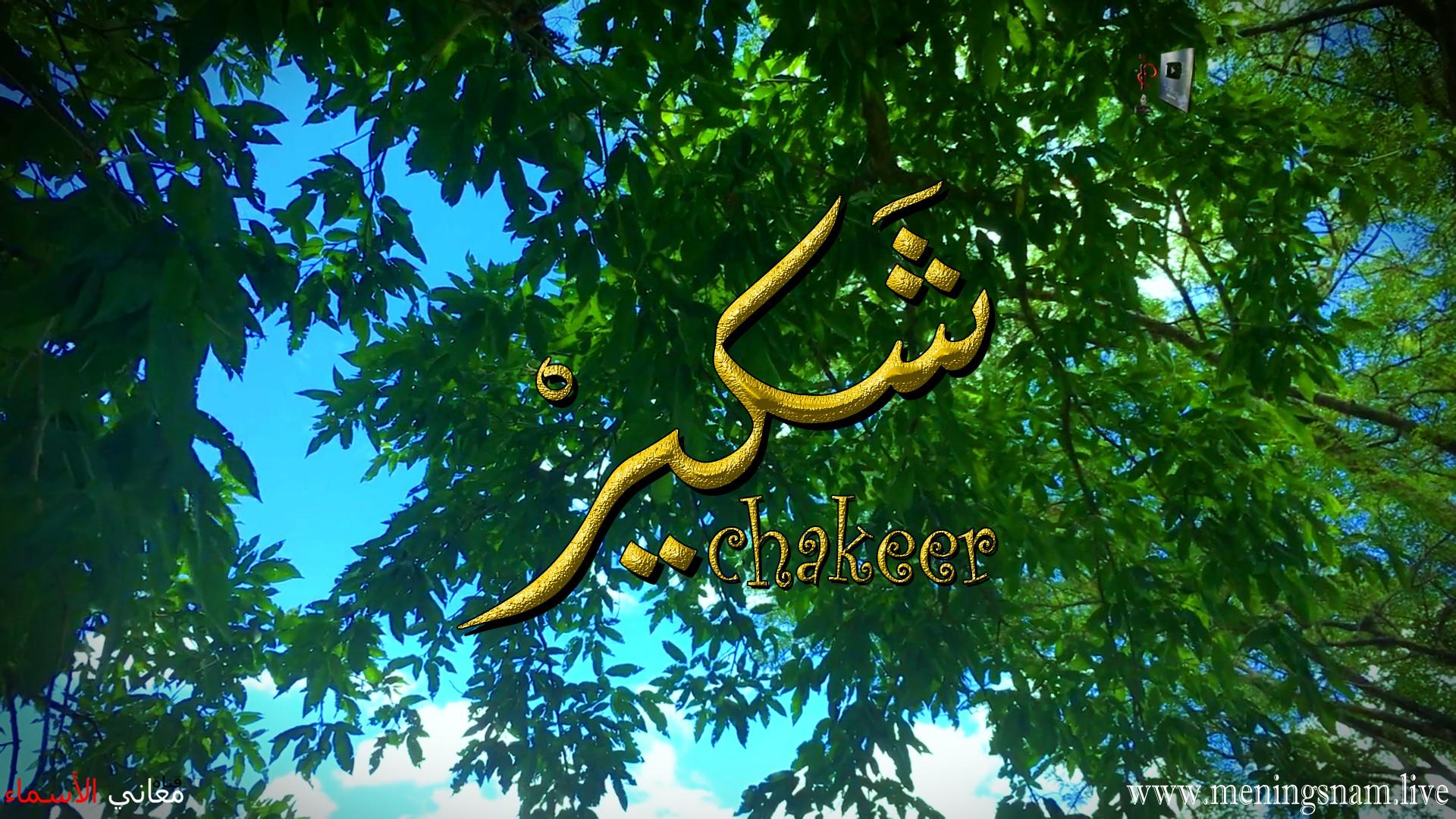 معنى اسم شكير وصفات حامل هذا الاسم Shakir,