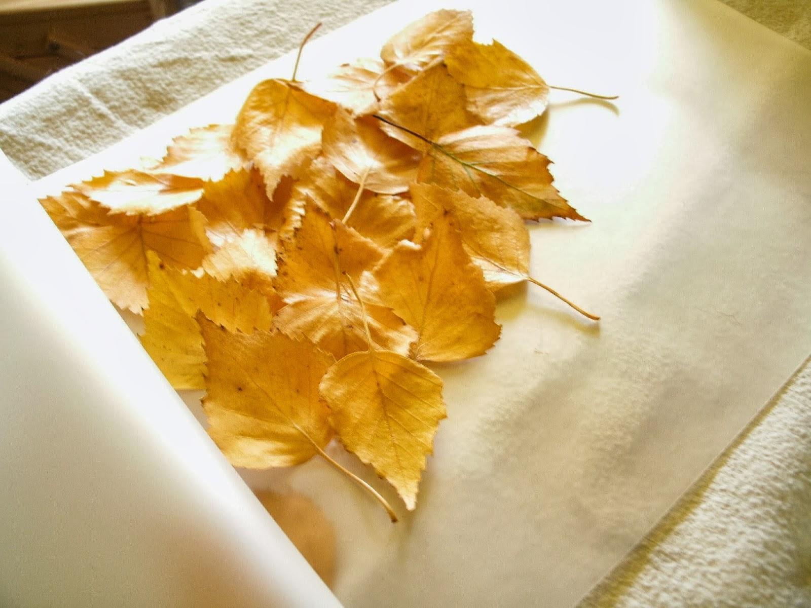 Kochloeffel Und Nadelkissen Herbstlaub Laterne Eine