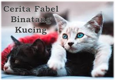 Cerita Fabel Binatang Kucing Oleh Kak Rasyid