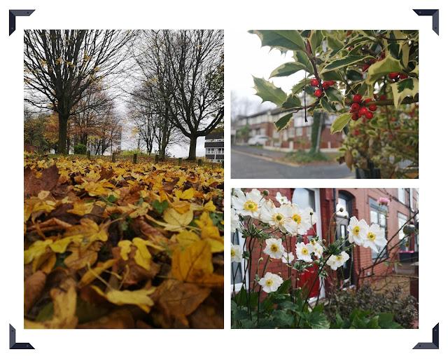 Colagem de fotos. Rua coberta por folhas no outono, azevinho, flores brancas com prédios ao fundo