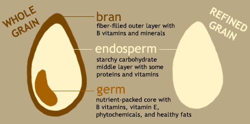 Refined grains and Whole grains