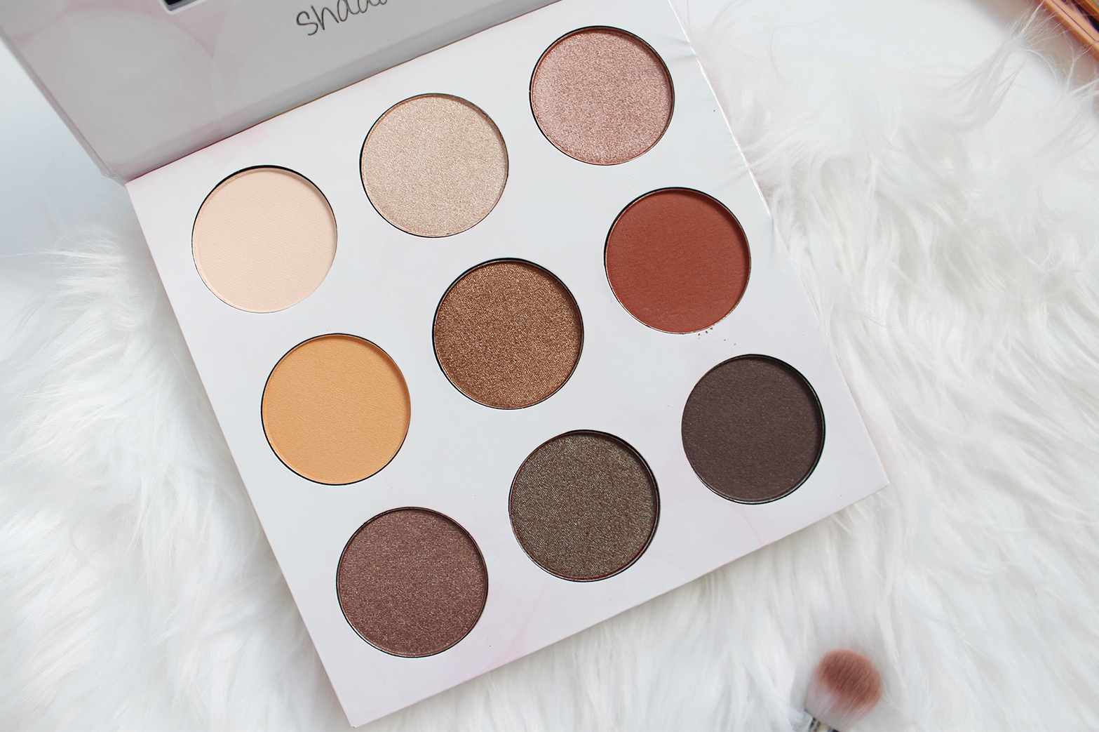 BH COSMETICS | Shaaanxo 18 Color Eyeshadow + Lipstick Palette - Review + Swatches - CassandraMyee