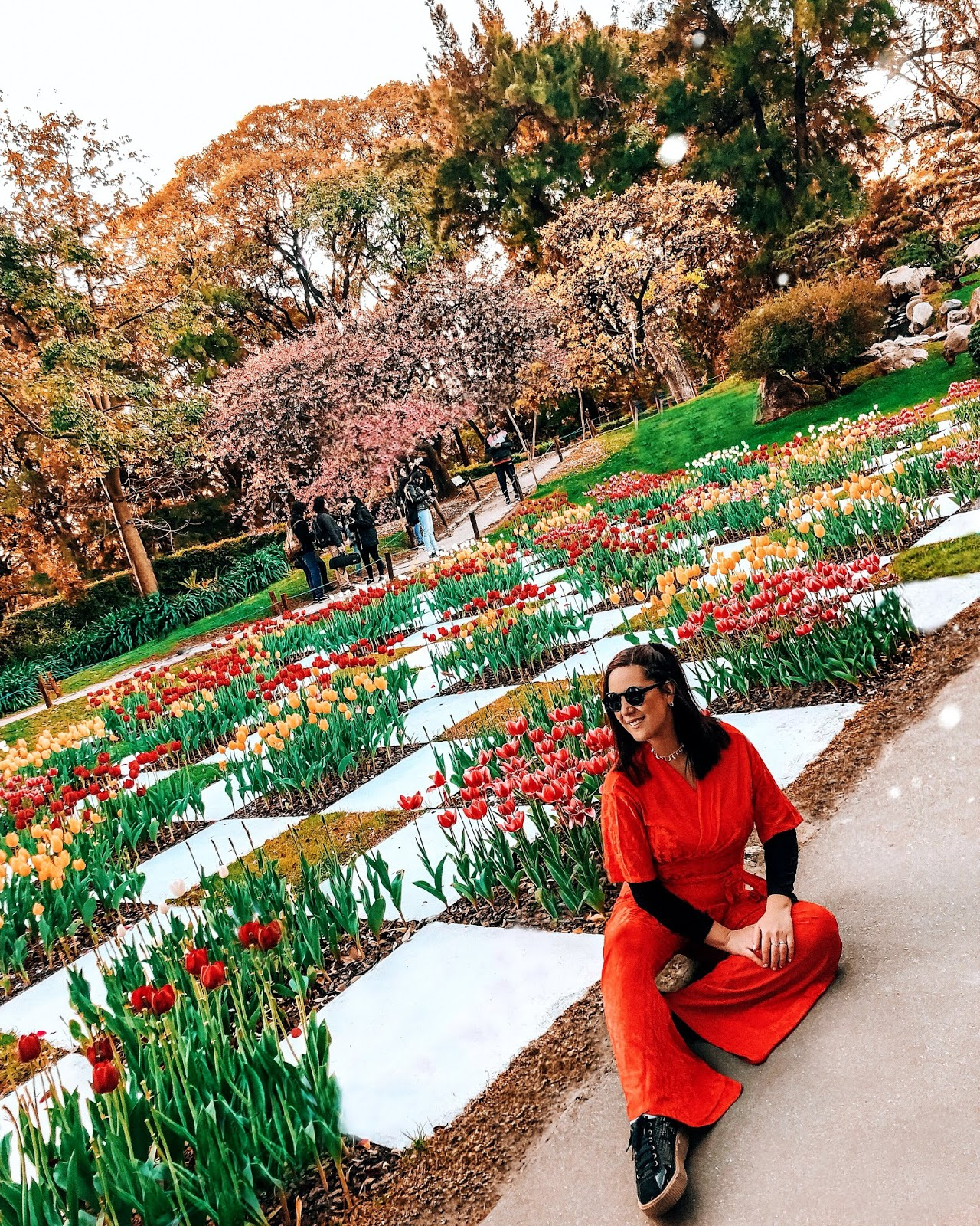 tulipanes en el jardín japones