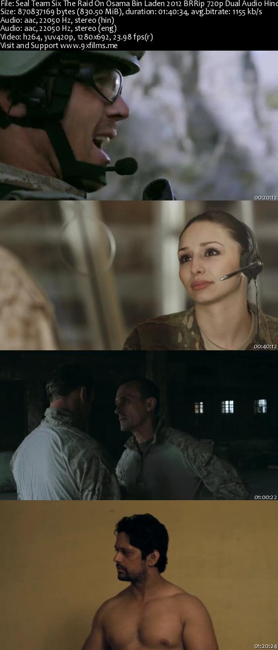 Seal Team Six The Raid On Osama Bin Laden 2011 BRRip 720p Dual Audio Hindi 800MB