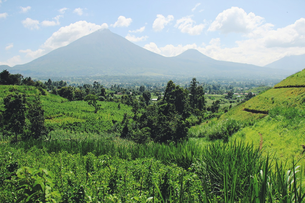 Uganda: In the Mountains of Kisoro! – Die Berge von Kisoro