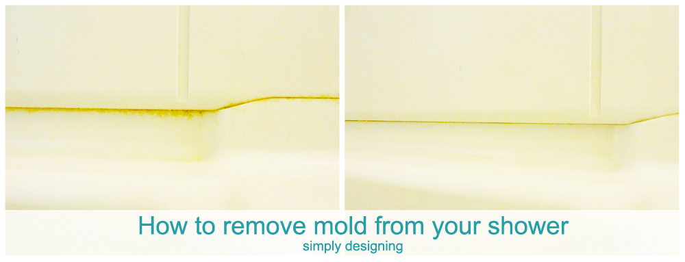 How To Remove Mold From Bathroom Walls 28 Images