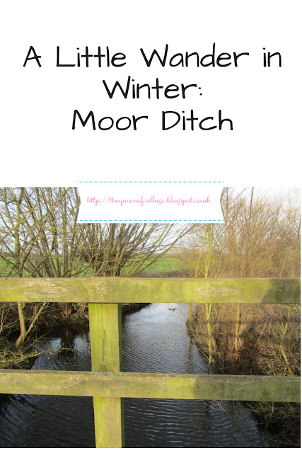 A Little Wander in Winter: Moor Ditch