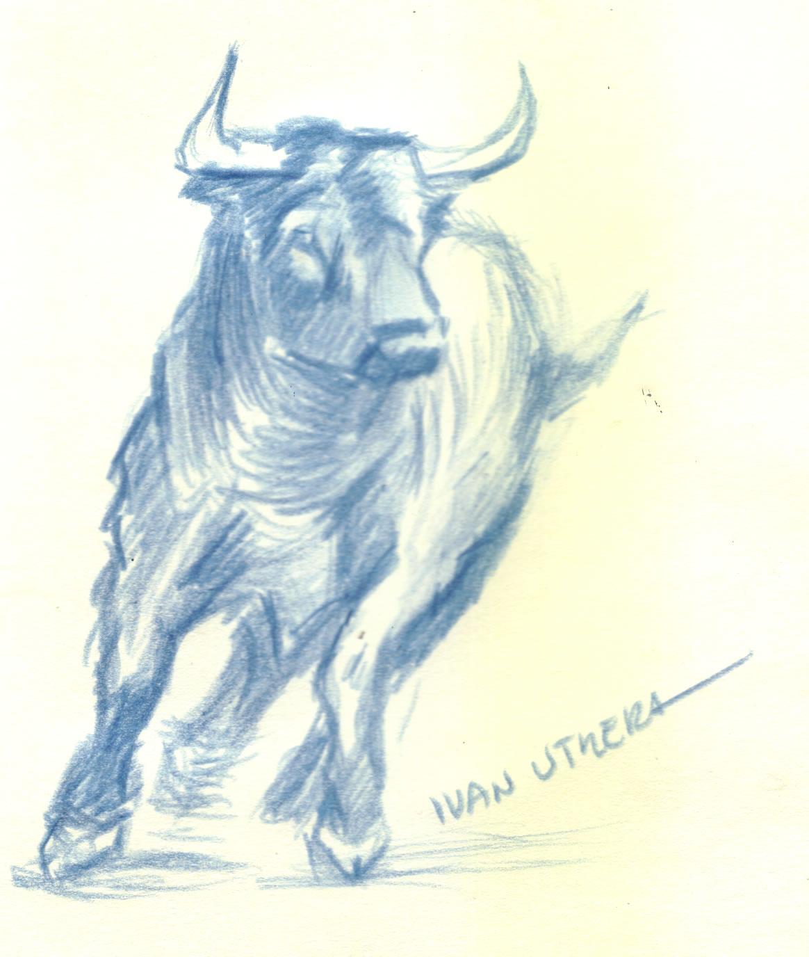 Toro En Lapices De Colores Dibujo A Lapicero Draw Drawing
