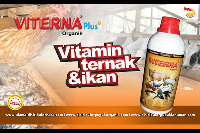Vitamin Ternak Viterna Plus - Solusi Ternak Sehat