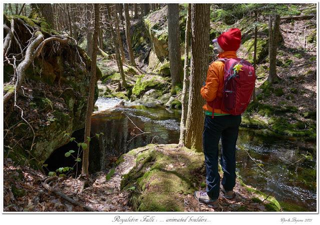 Royalston Falls: ... animated boulders...