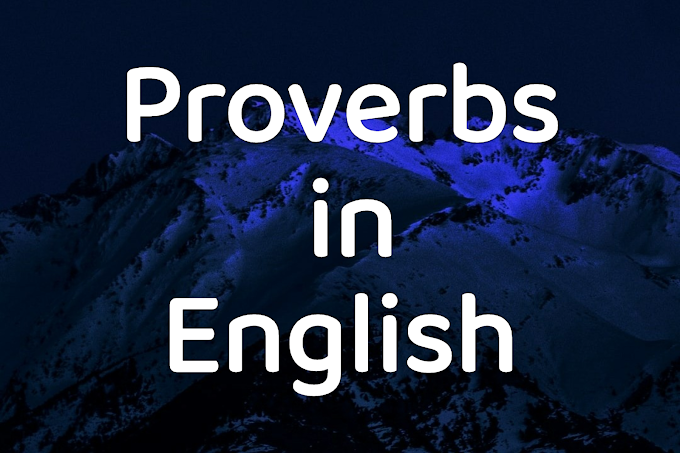 20 MOST IMPORTANT PROVERBS WITH MEANINGS AND EXAMPLES