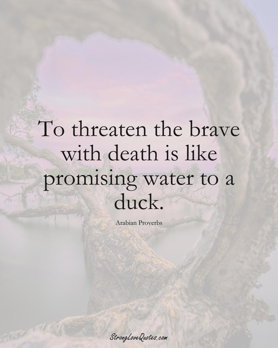 To threaten the brave with death is like promising water to a duck. (Arabian Sayings);  #aVarietyofCulturesSayings