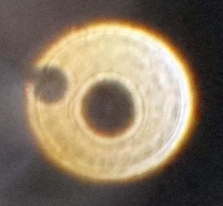 paranormal ring