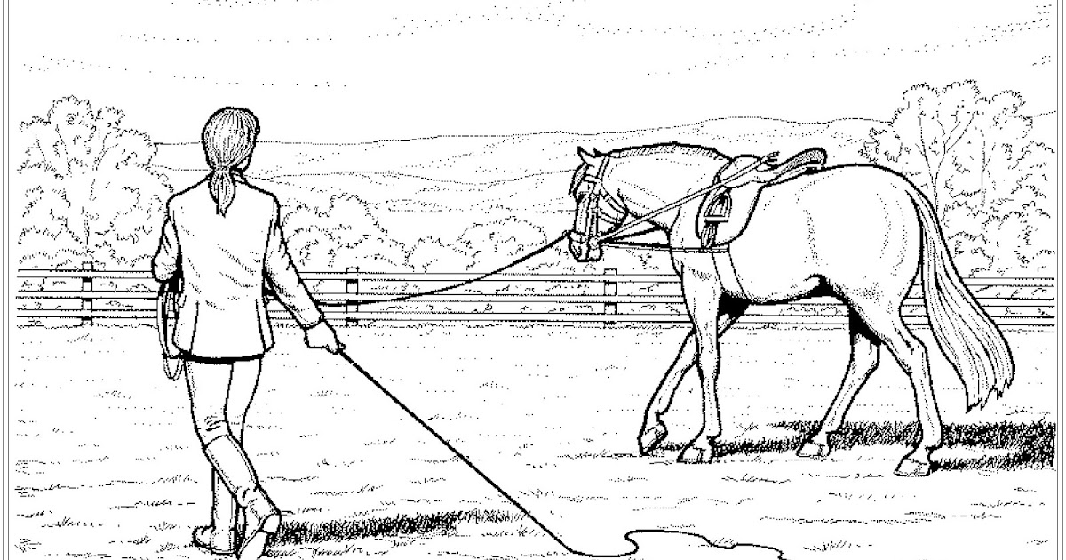 ausmalbilder pferde mit reiterin springend : ausmalbilder