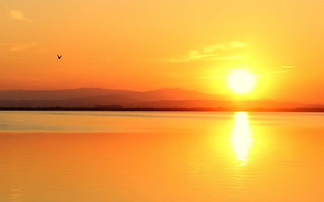Puesta de sol en la Albufera-Valencia