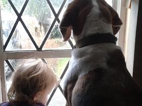 Autistic boy mourns dog