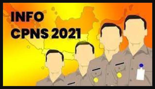 Apa syarat dan Ketentuan Umum Seleksi Pendaftaran CPNS 2021