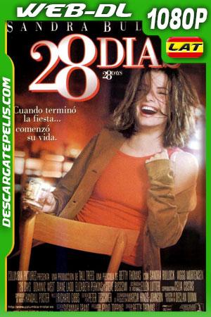 28 días (2000) 1080p WEB-DL Latino – Ingles