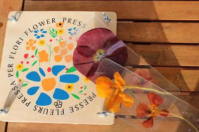 Marcadores de livros feitos com flores prensadas, e a prensa usada