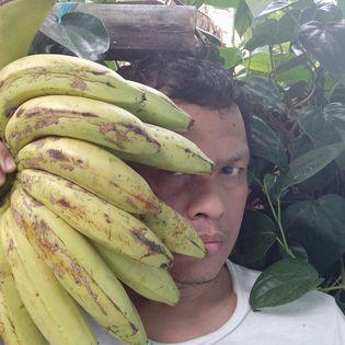 buah pisang mengandung banyak serat