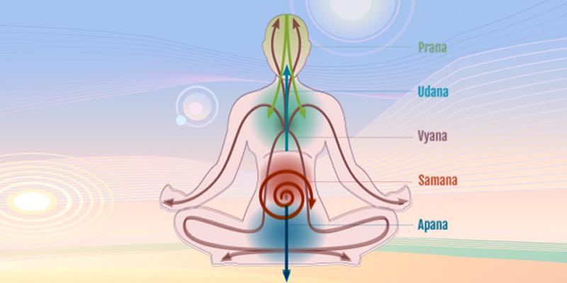 Latihan 5 Jenis Prana (Pancha Prana Vayu) untuk Kesehatan