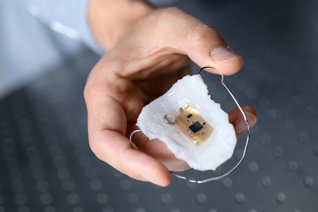 Detektor Sodium Pembantu Diet Garam