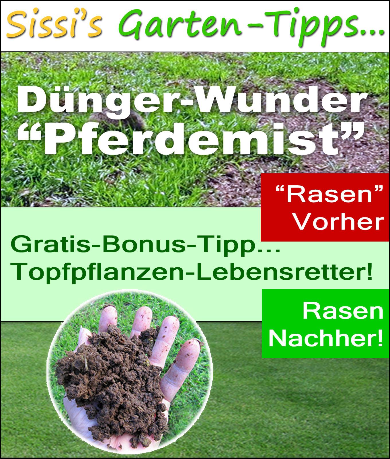 Dünger Wunder Pferdemist, auf Kindle bei Amazon.de