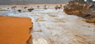 موريتانيا، نواكشوط، الشرق الموريتاني، امطار شديدة، القدس العربي، حربوشة نيوز