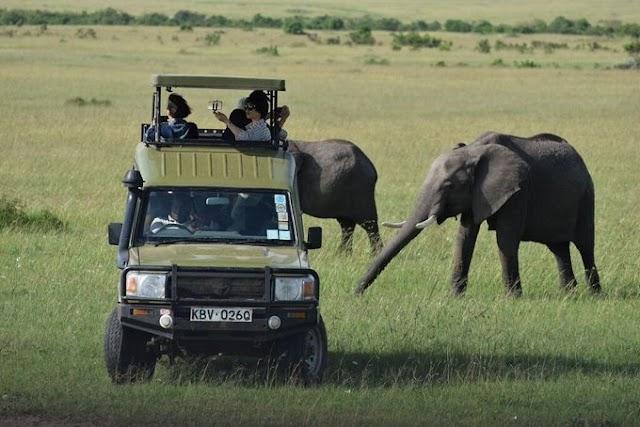 Wildlife world in Kenya