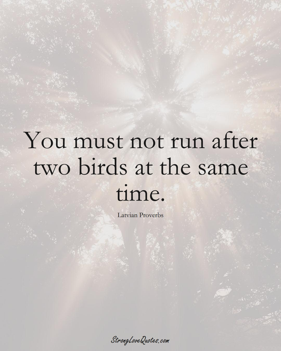 You must not run after two birds at the same time. (Latvian Sayings);  #EuropeanSayings