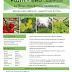 Plant Feed - ΑΝΑΠΤΥΞΗΣ - Leaflet